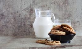 Sweet cookies with roasted peanuts on a beautiful plate and on the table. Jug of fresh milk and glass on grey background stock photos