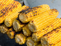 Appetizing delicious corn grilled outdoors on a picnic. Selective focus Royalty Free Stock Photo