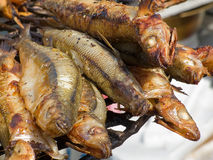 Appetizing delicious fried seafood, fish on a barbecue grill outdoors. Stock Photos