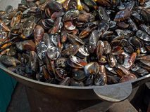 Appetizing delicious fried seafood mussels cooked fried in a cauldron outdoors. Royalty Free Stock Photo