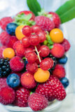 Appetizing delicious ripe juicy berries Royalty Free Stock Photography