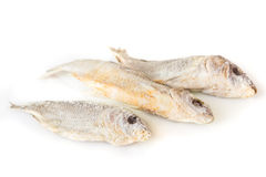 Appetizing dry and salted fish isolated at the white background Royalty Free Stock Images