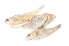 Appetizing dry and salted fish isolated at the white background Royalty Free Stock Image