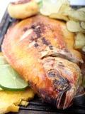 Appetizing Fish Royalty Free Stock Photo