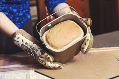 Appetizing fresh loaf of bread in form of baking bread. Female hands in kitchen gloves holding metal mold for baking bread. Inside appetizing hot loaf of bread Stock Image