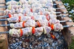 Appetizing fresh meat shish kebab (shashlik) Stock Images