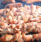 Appetizing fresh meat shish kebab (shashlik) Stock Photos