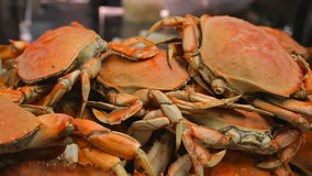 Appetizing freshly prepared crabs close-up stock video
