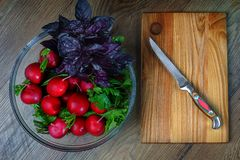 Appetizing freshly washed, fresh radish and basil in a colander, next to it there is a board for cutting food and a knife lies on royalty free stock photography