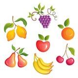 Appetizing fruits. royalty free illustration