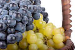 Appetizing grapes in a basket Stock Photo