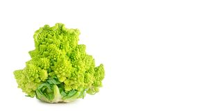 Appetizing green cathedral broccoli isolated on white background, health food. copy space, template. Appetizing green cathedral broccoli isolated on white Royalty Free Stock Photos