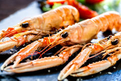 Appetizing grilled spiny lobsters. Royalty Free Stock Images