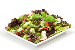 Appetizing healthy salad Stock Photography