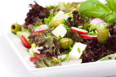 Appetizing healthy salad Stock Image