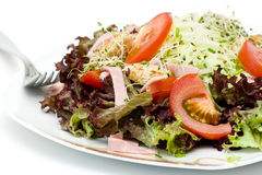 Appetizing healthy salad Royalty Free Stock Photography