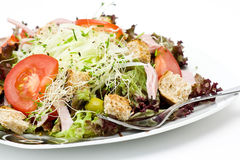 Appetizing healthy salad Stock Images