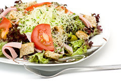Appetizing healthy salad Royalty Free Stock Images
