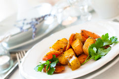 Appetizing and healthy vegetarian food Royalty Free Stock Photo