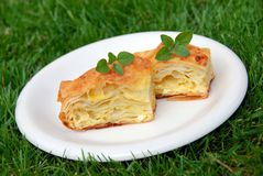 Appetizing homemade pastry Royalty Free Stock Photos