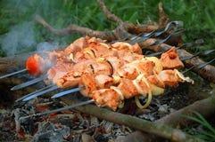 Appetizing juice shashlik. Royalty Free Stock Photo