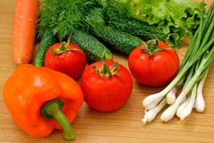 Appetizing light vegetables Stock Photography