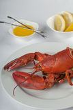 Appetizing lobster dish Royalty Free Stock Photos