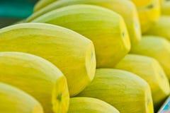 Appetizing mangoes Royalty Free Stock Photo