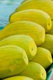 Appetizing mangoes Royalty Free Stock Image