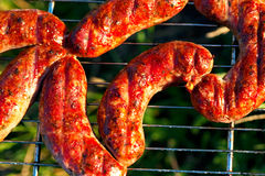 Appetizing meat sausage on the barbecue Stock Image