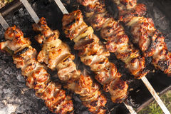Appetizing meat on skewers. Stock Images