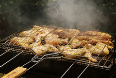 Appetizing pastime. The grille with chicken wings roasted Royalty Free Stock Image