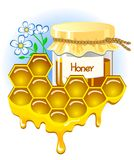 Appetizing pitcher with honey. Honeycomb with honey flowing down from them. Stock Photos
