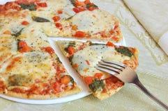 Appetizing pizza with mozzarella Stock Image