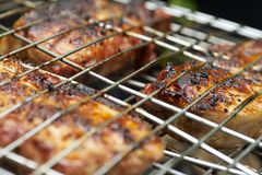 Appetizing pork-grill. On a lattice of a mangal in summer day Royalty Free Stock Photos