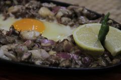 Appetizing pork sisig. An appetizing version of sisig is the sizzling crispy sisig. The pork belly is crispy fried until golden brown and chopped into small stock images