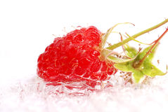 Appetizing raspberries Stock Photos