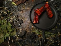 Appetizing ribs lie in a frying pan. Fried oil ribs lie on a black frying pan. The frying pan stands on a dark wooden table among pieces of coal. Hay is lying Royalty Free Stock Image