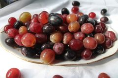 Fruit on dessert. Appetizing ripe sweet violet juicy grapes fruit on cluster for dessert royalty free stock photography