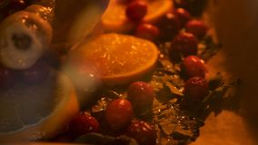 Appetizing Roast chicken turkey with Orange Slices Cranberries and Herbs in the oven Royalty Free Stock Photo