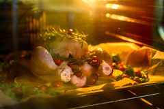 Appetizing Roast chicken turkey with Orange Slices Cranberries and Herbs in the oven Royalty Free Stock Image