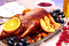 Appetizing roast duck with orange Royalty Free Stock Image