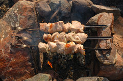 Appetizing roasted shish kebab (shashlik). Royalty Free Stock Photography