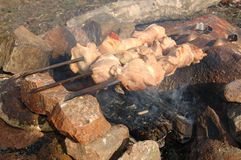 Appetizing roasted shish kebab (shashlik). Royalty Free Stock Photos