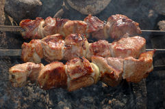 Appetizing roasted shish kebab (shashlik). Stock Photos
