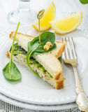 Appetizing sandwich with chicken, spinach, avocado Royalty Free Stock Photo