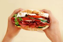 Appetizing sandwich with ham and cheese Royalty Free Stock Photos