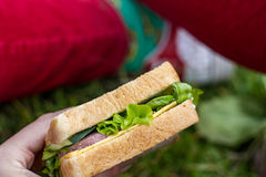 Appetizing sandwich for a picnic Royalty Free Stock Image