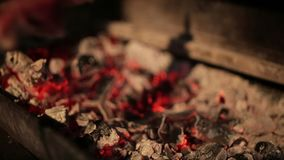 Appetizing skewers of meat fried on the coals stock video footage
