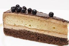 Appetizing slice of sponge cake on a plate closeup. Royalty Free Stock Photo